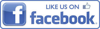 Image result for like us facebook logo