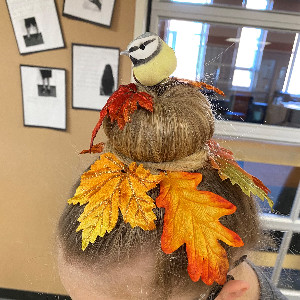 Picture of hairdo with bird on nest
