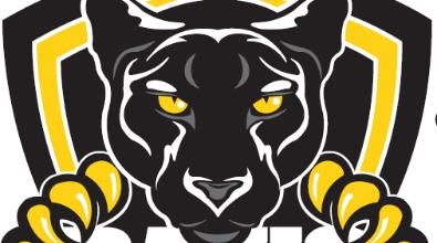 Davis Panther Logo