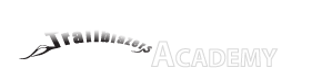 Chicopee Academy