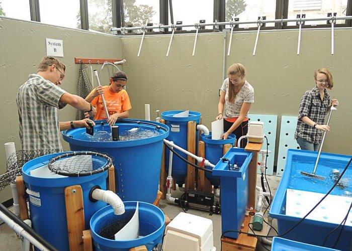 Aquaponics Lab Photos