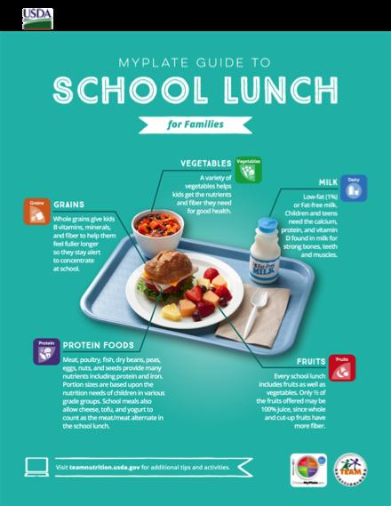 school lunch infographic