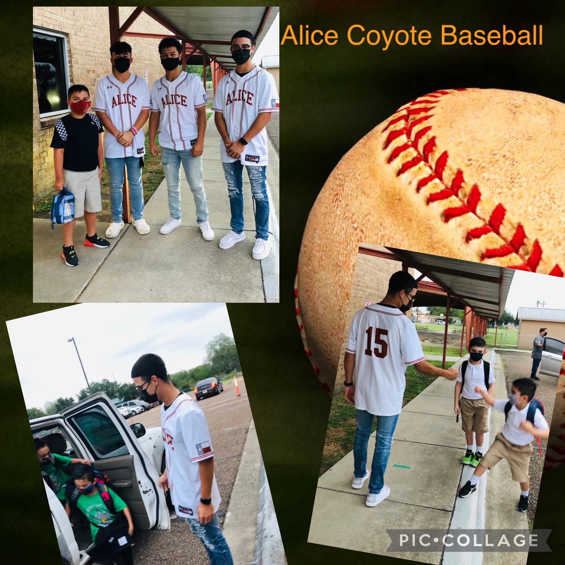 Coyote Baseball