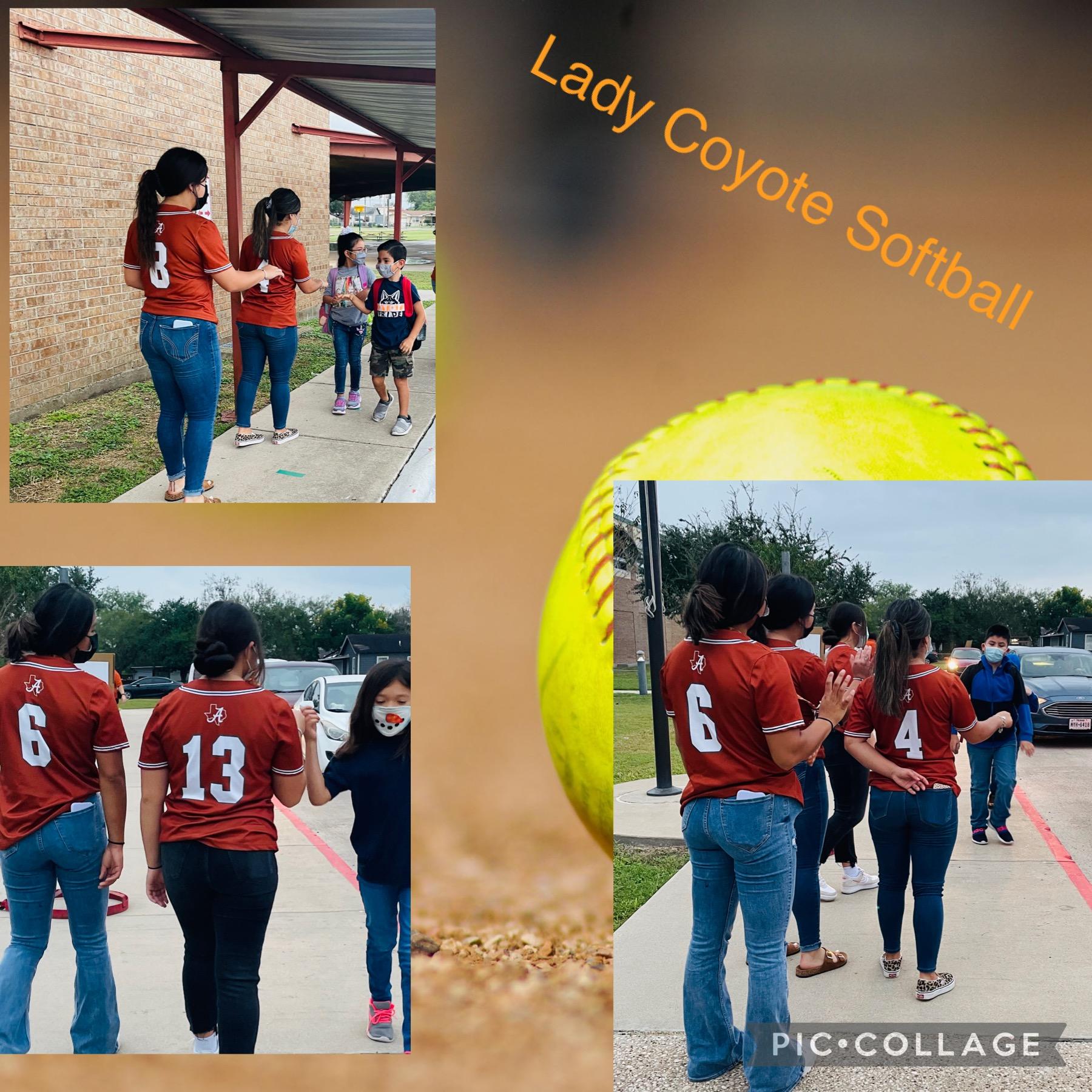 Lady Coyote Softball