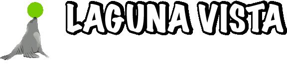 Laguna Vista STEAM Academy