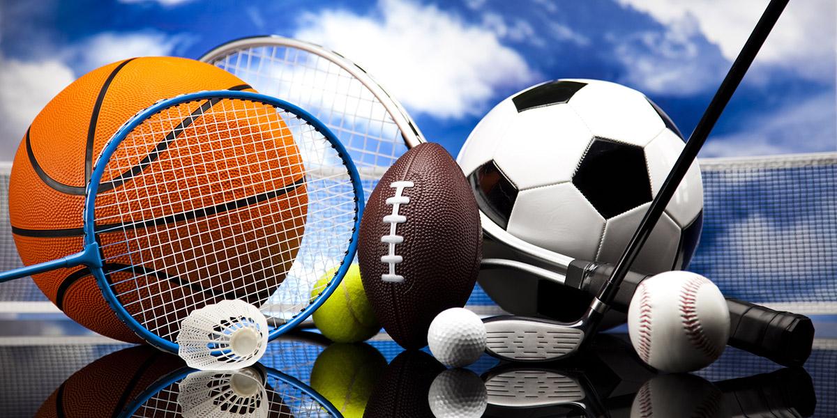 Sports Fees