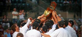 image of baseball players celebrating holding trophy